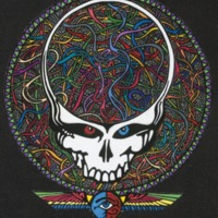 Grateful Dead Skull: Neurological Wiring